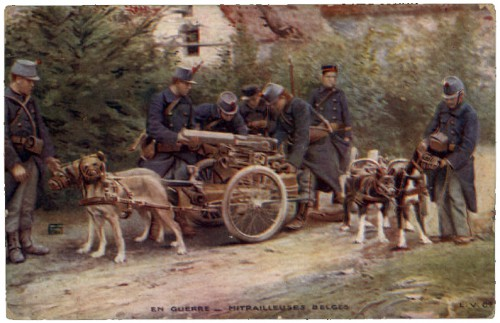 cartes postales anciennes,photo,illustration,guerre 1418,grande guerre,chien,collection,brocante