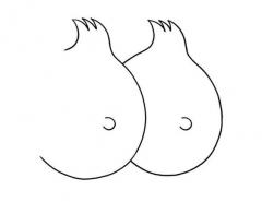 Mrzyk et Moriceau,dessin,graphisme,Tintin,détournement,humour