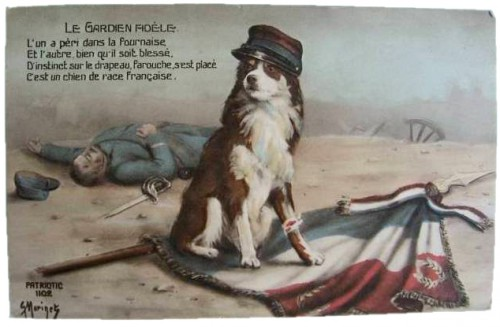 cartes postales anciennes,photo,illustration,guerre 14/18,grande guerre,chien,collection,brocante
