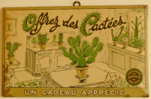 cactus,cactées,figurine,glaçoide,brocante,collection