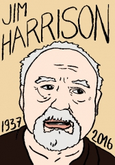 Jim Harrison, dessin, portrait, laurent Jacquy