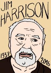 Jim Harrison, dessin, portrait, laurent Jacquy