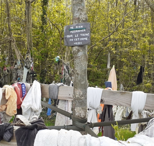 arbres remarquables, arbre à loques, sénarpont, somme, picardie, croyance populaire