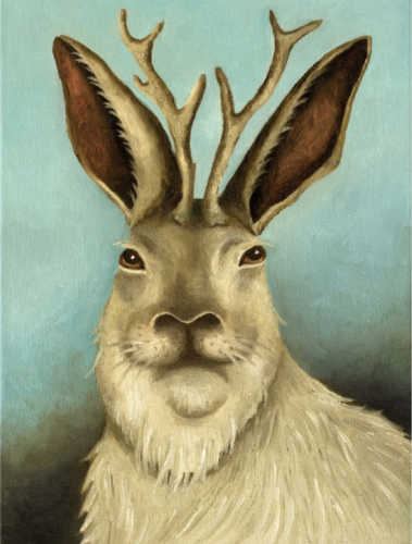 taxidermie,animal empaillé,art populaire,jackalope