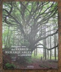 arbres,cartes postales anciennes,Édition,nature